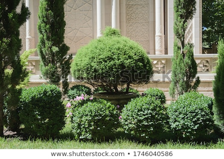 Architecture Stock Home Landscaping Design Photo Images Stock photo © cr8tivguy