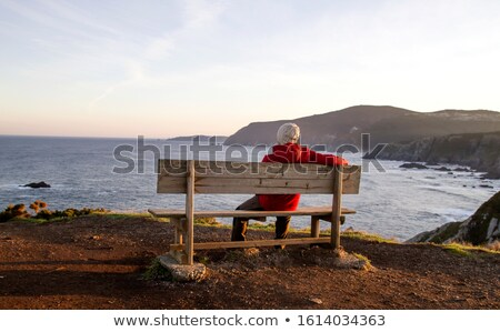 atlantic winter view and red benches Stock photo © morrbyte