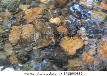 selymes · mély · kék · medence · víz · természetes · fény - stock fotó © pixelsnap