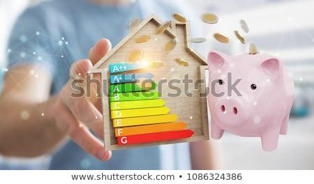énergie consommation étiquette femme maison Photo stock © photography33