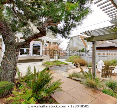 primavera · quintal · jardim · madeira · grama · edifício - foto stock © iriana88w