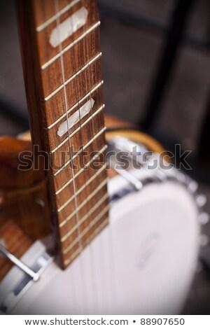 Selective Focus Banjo Frets Stock photo © oliverjw
