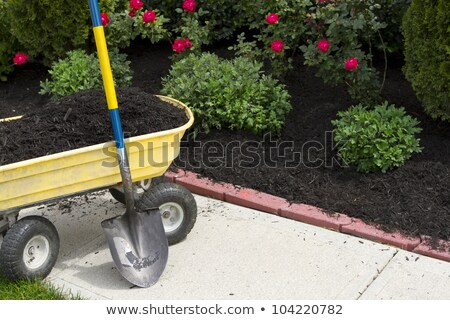 Stock photo: Time to Mulch