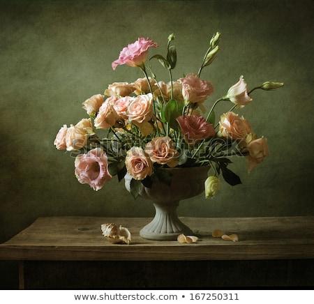 rose-stilllife Stock photo © Photofreak