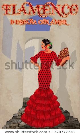 Flamenco spanyol táncos lány gitár vektor Stock fotó © carodi