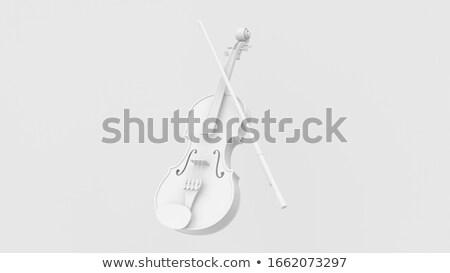 Hegedű fehér izolált fa forma barna Stock fotó © Roka