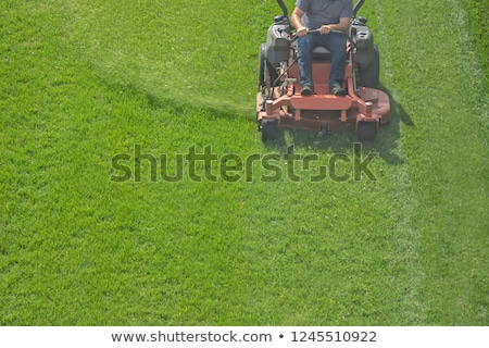 lawn care riding mower stock photo © 2tun