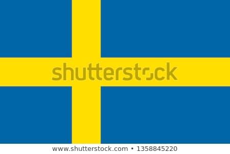 цветы Швеция набор различный дизайна Сток-фото © perysty