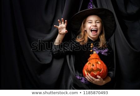 Heureux sorcière chat battant manche à balai automne Photo stock © jorgenmac