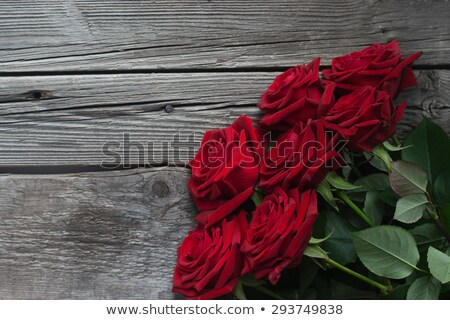 Red Rose on Timber Stock photo © Nelosa