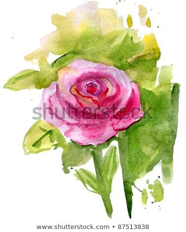 Rose Bush artistic toned Stock photo © Lizard
