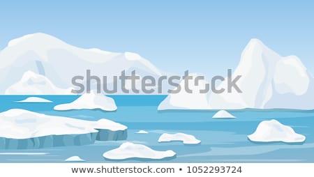 Cartoon oceaan landschap ijs golf Stockfoto © blamb
