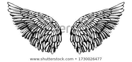 Estilizado negro alas dos tinta gráfico Foto stock © HunterX