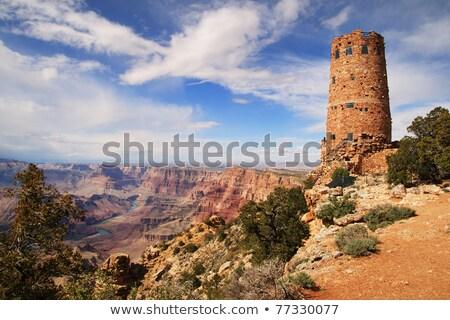 Grand Canyon woestijn Arizona amerika muur Stockfoto © stocker