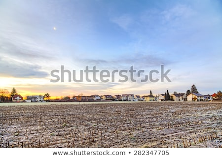sunrise in a suburb of Munich with Chinool winds and houses at the horizon Stock photo © meinzahn
