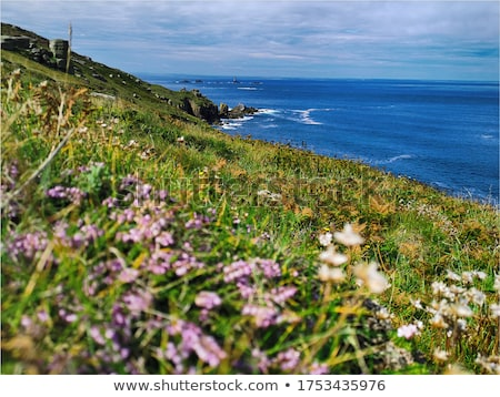 Panoramic view of Sennen Cove and Cape Cornwall. Stock photo © latent