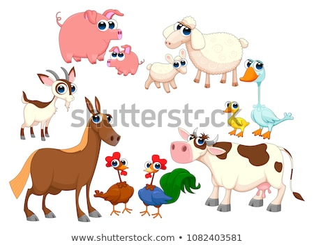 Cartoon jonge haan stijl ontwerp kip Stockfoto © anbuch