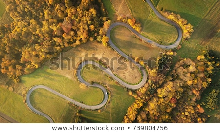 Cars Driving a Windy Road in Autumn Stock photo © leetorrens