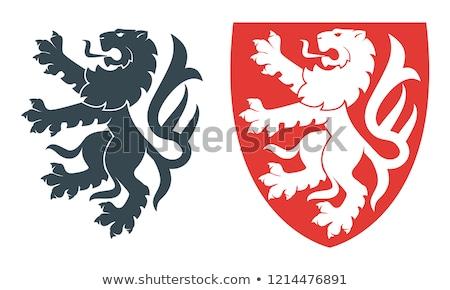 Héraldique lion anciens manteau bras Photo stock © oblachko