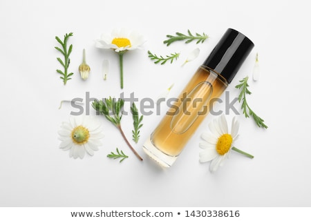 bottle with essence oil and chamomile flowers isolated on white Stock photo © tetkoren