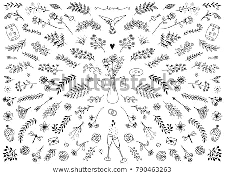 hand drawn collection of decorative wedding design elements with rings stock photo © netkov1