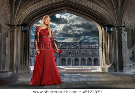 beautiful medieval princess holding lantern stock photo © nicoletaionescu