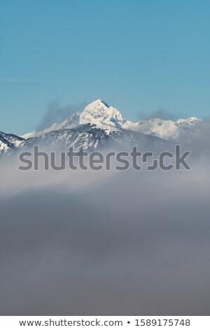 sneeuwval · berg · winter · bos · mooie · landschap - stockfoto © fesus