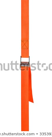 Orange cam buckle strap on a white background Stock photo © Zerbor