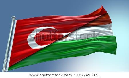 トルコ ニジェール フラグ パズル 孤立した 白 ストックフォト © Istanbul2009
