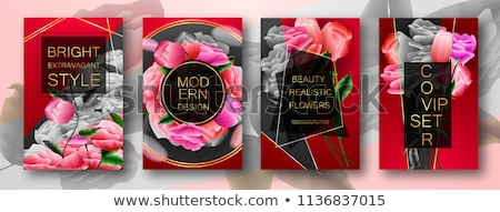 colorful roses set flowers eps 10 stock photo © beholdereye
