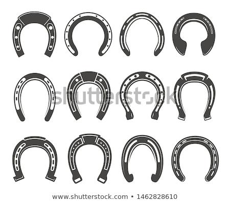 ferradura · quatro · folha · trevo · projeto · dia · de · São · Patricio - foto stock © winner