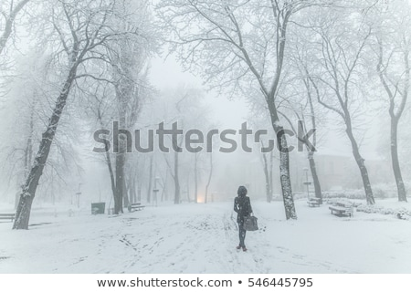 girl walks on town lonesome road. Stock photo © fanfo