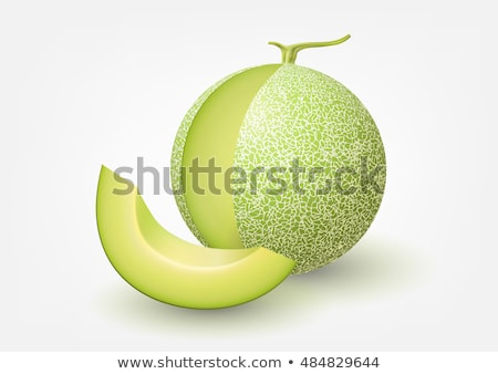Green Melon Cut on White Background. Vector illustration Stock photo © ConceptCafe