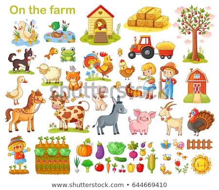 Boeren boerderijdieren ingesteld illustratie werk natuur Stockfoto © bluering