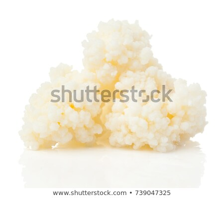 Leite kefir cogumelo orgânico Foto stock © Digifoodstock
