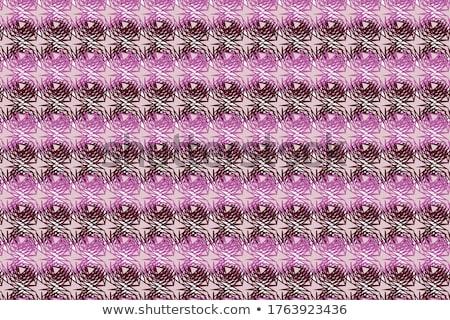 Geometría símbolo diseno resumen tarjeta anunciante Foto stock © SArts