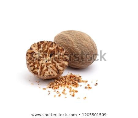 küçük · hindistan · cevizi · tohumları · ve · zemin · beyaz - stok fotoğraf © vinodpillai