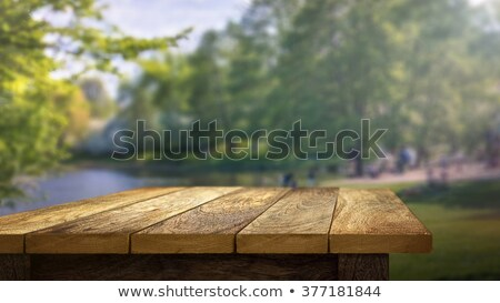 晴れた 緑 自然 木製のテーブル 選択的な ぼけ味 ストックフォト © Yatsenko