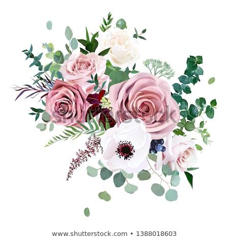 ストックフォト: 国境 · ピンク · 庭園 · バラ · 青空 · バナー
