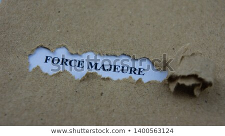 Blue Carabiner with Text Liabilities. Stock photo © tashatuvango