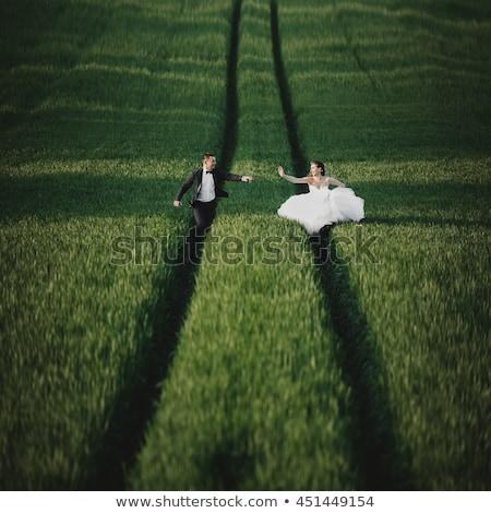 a wedding couple walking along a path stock photo © is2