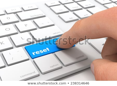 Keyboard with Red Button - Reset. 3D. Stock photo © tashatuvango