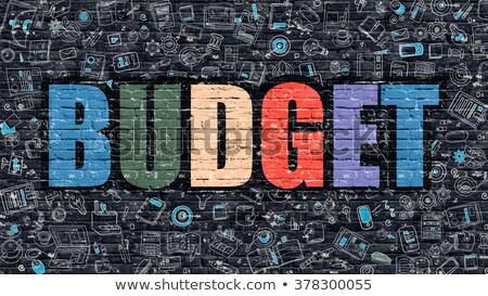 бюджет болван дизайна белый стены Сток-фото © tashatuvango