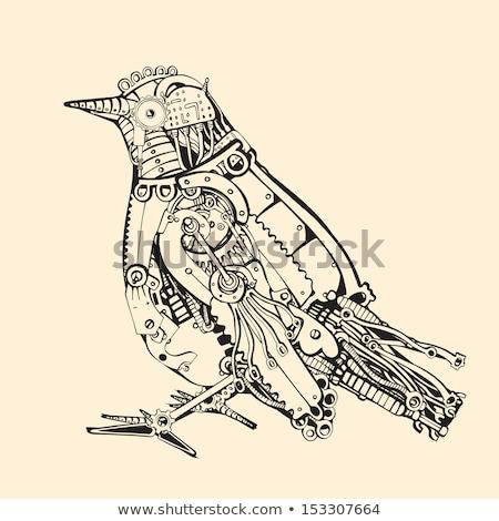 メカニカル 鳥 真鍮 歯車 ターコイズ ストックフォト © blackmoon979