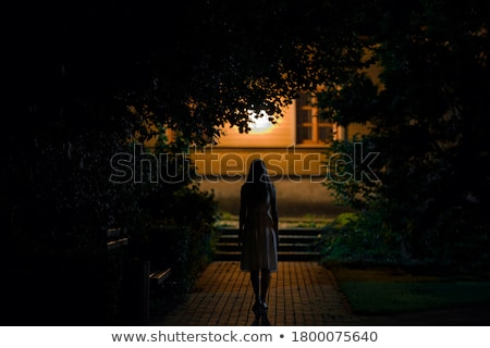 Achteraanzicht vrouw lopen weg nacht achteraanzicht Stockfoto © stevanovicigor