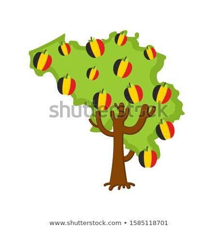красное · яблоко · Мир · карта · вектора · белый · яблоко · лист - Сток-фото © popaukropa
