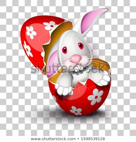 Funny bunny driving an egg shell Stock photo © tilo
