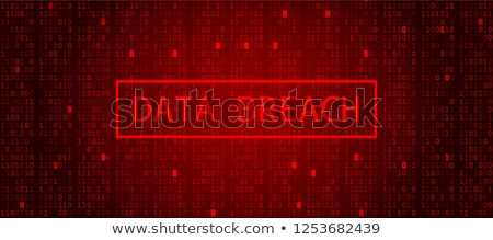 Data Breach Stock photo © Lightsource