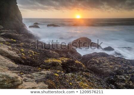 deniz · gün · batımı · rodeo · plaj · Kaliforniya · ABD - stok fotoğraf © yhelfman