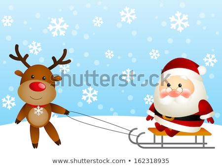 северный · олень · Солнцезащитные · очки · Дед · Мороз · оленей · белый - Сток-фото © liolle